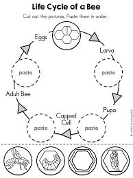 Another anatomy of a bee chart. Plus a great website with