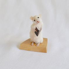 Taxidermy mouse with book.