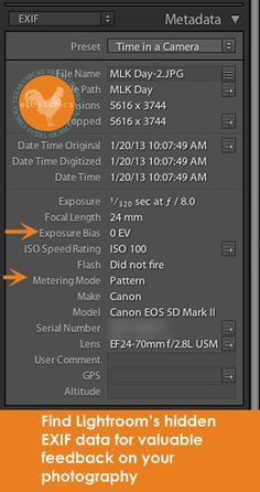Lightroom Tutorial: Hidden Information About Your Photos. Article by Erin. http://www.texaschicksblogsandpics.com/lightroom-tutorial-hidden-information-about-your-photos/