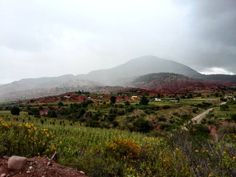 Rain #mexico #oaxaca #fromwhereistand #country  #countryside #color #pueblo #natural #nature #naturaleza #earth #worldcolors #instanature #instaworld #photooftheday #worldstagram #natureporn
