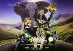 Fairytale shoot, VW Beetle animals on the road by Photo Osenga