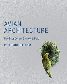 Avian Architecture: How Birds Design, Engineer, and Build
