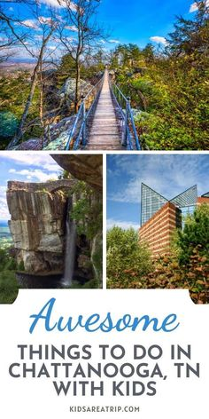 If you are looking for a vacation destination families will love, head to Chattanooga Tennessee. With plenty of outdoor adventures and one of the best aquariums we've ever seen, we are sure you will find plenty of things to do in Chattanooga. - Kids Are A Trip |Chattanooga TN| Tennessee travel| Chattanooga Tennessee things to do |tennessee vacation Travel Guides, Travel Tips, Travel Destinations, Toddler Travel, Travel With Kids, Canada Travel, Usa Travel, Family Vacations, Family Travel