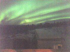 Aurora borealis in Thorne Bay, Alaska 3-12-2016.  Photo by Rene Hayes. Aurora Borealis, Alaska, Cruise, Northern Lights, Northen Lights, Cruises, Nordic Lights