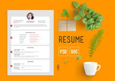 This CV template belongs PSD versions. This template is customizable and ready to print. College Resume Template, Best Resume Template, Creative Resume Templates, Design Templates, Teaching Resume, Resume Writing, Resume Tips, Resume Examples, Simple Cv Template