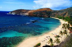 Hanama Bay, Oahu--yes this is what it really looks like. First trip to the ocean