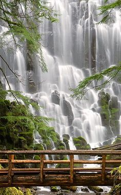 Ramona Falls | Travel | Vacation Ideas | Road Trip | Places to Visit | Portland | OR | Natural Feature | Hiking Area | Scenic Point