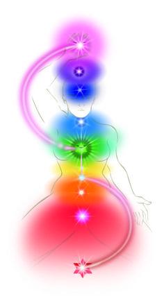 The Light Body