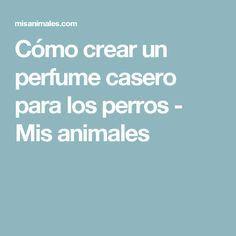 Cómo crear un perfume casero para los perros - Mis animales
