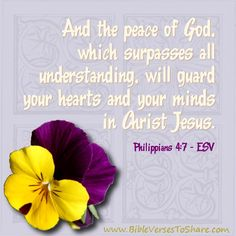 """""""And the peace of God, which surpasses all understanding, will guard your hearts and your minds in Christ Jesus."""" Philippians (ESV) – Bible Verses To Share Encouraging Bible Verses, Favorite Bible Verses, Scripture Art, Bible Scriptures, Esv Bible, Scripture Pictures, Healing Scriptures, Favorite Quotes, Peace Of God"""