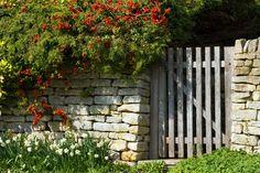 Ogrodzenie z kamienia - Dom.eu