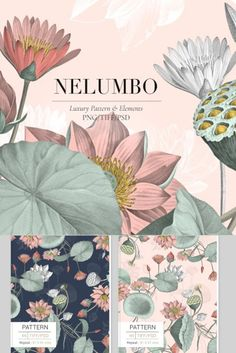 NELUMBO,is an exquisitely luxuriously pattern with subtle elegant colors and vintage etching style that comes in a seamless pattern design along with quality individual motifs.