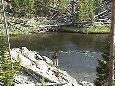 fly fishing Yellowstone ...Firehole Canyon
