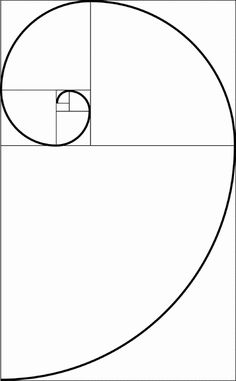 DRAWING: The Golden Spiral - basis of natural geometry. Fibonacci Golden Ratio, Fibonacci Spiral, Geometry Art, Sacred Geometry, Nature Geometry, Escher Kunst, Nautilus, Elements And Principles, Math Art