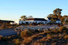 Badsfontein Murraysburg