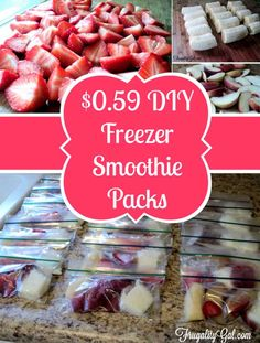 Cheap and Healthy DIY Freezer Smoothie Packs | http://diyready.com/diy-smoothie-freezer-kits/