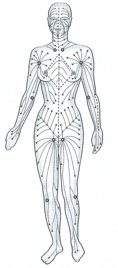 système lymphatique Massage Tips, Massage Techniques, Massage Therapy, Ayurveda, Alternative Health, Alternative Medicine, Lymphatic Drainage Massage, Body Brushing, Lymphatic System