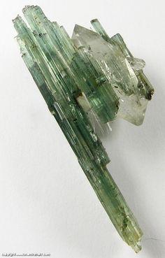 Mineral Specimen: Tourmaline on Quartz from Barra do Salinas, Coronel Murta, Minas Gerais, Brazil