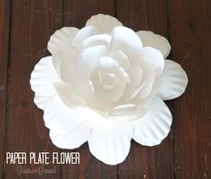 Paper Plate Flower by PartiesforPennies.com (bet that would be a great link).