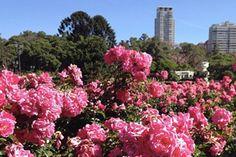 Melhores 10 lugares para visitar em Buenos Aires
