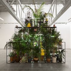 Islands, Rashid Johnson's third solo exhibition at David Kordansky Gallery, features new wall- and floor-based sculptures. These include a hollow fifteen-foot high pyramid, shaped vitrine-like tables, and erratically contoured shelf-works. Broadly taking a cue from Richard...