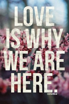 """""""Love is why we are here."""""""