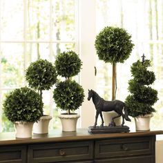A collection of boxwoods with equestrian accents gives the perfect touch of English International decor flare for a entry. #TuesdayMorning