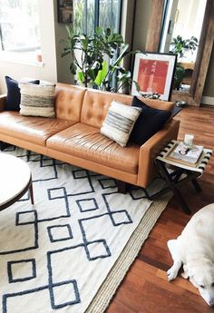 tan leather sofa, cream rug, wooden floor, plants, round coffee table