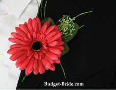 Red gerbera for David - silk, so more sturdy and I won't sneeze!