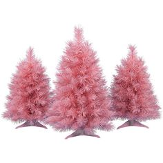 Pretty In Pink Tabletop Trees ❤ liked on Polyvore featuring home, home decor and pink home decor