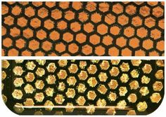 Fuseworks Dichroic Honeycomb 90 COE Fusible 2-Inch-by-3-Inch Glass, Orange, 1-Pack *** Learn more by visiting the image link.