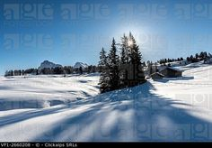 Alpe di Siusi/Seiser Alm, Dolomites, South Tyrol, Italy. Winter landscape on the Alpe di Siusi/Seiser Alm. © Clickalps SRLs / age fotostock - Stock Photos, Videos and Vectors