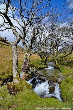 Hagg Gill, Troutbeck Park in the Lake District National Park, Cumbria, England
