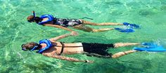 Best places to snorkel in Sri Lanka Hawaii Vacation, Oahu Hawaii, Hawaii Travel, Hawaii 2017, Snorkelling, Scalloping In Florida, Sri Lanka, Jamaica Tours, Snorkeling