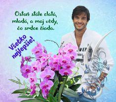 narodeninove priania – pre potešenie duše Good Morning, Floral, Humor, Birthday, Flowers, Blog, Facebook, Quotes, Buen Dia