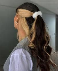 Hair Color Streaks, Hair Highlights, Skunk Hair, Hair Dyed Underneath, Bleached Hair, Aesthetic Hair, Grunge Hair, Green Hair, Black Hair