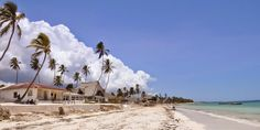 Strand auf Sansibar © Carina Dieringer Carina, Strand, Beach, Water, Outdoor, Tanzania, Island, Gripe Water, Outdoors