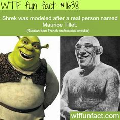 Shrek and Maurice Tillet -WTF fun facts