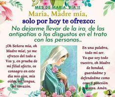 Regina Coeli, Religion Catolica, God Loves You, Words, Sorority, Rosario, Rome