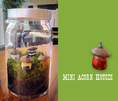 Mini Acorn Houses & Terrarium. Fun craft idea for kids!