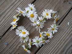 Daisy heart.