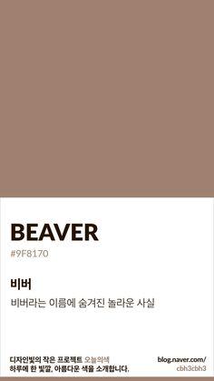 Flat Color Palette, Colour Pallete, Color Schemes, Pantone Colour Palettes, Pantone Color, Solid Color Backgrounds, Colorful Backgrounds, Brown Pantone, Collage Background