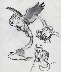 Flying cat - cyinty animal inspiration for mythical or myth among myths. Fantastic character design for an owl griffin. Mythical Creatures Art, Mythological Creatures, Magical Creatures, Creature Drawings, Animal Drawings, Art Drawings, Wolf Drawings, Drawing Animals, Poses References
