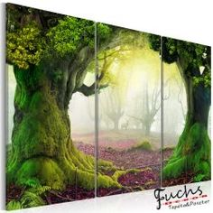 Kép - Mysterious forest - triptych