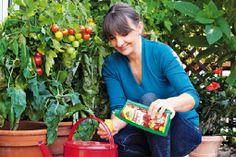 Gardenplaza - Tipps zu Anzucht und Pflege des roten Fruchtgemüses - Leckere Tomaten aus eigenem Anbau
