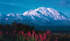 Mount McKinley, or Denali, in Alaska is the highest mountain peak in North America at a height of approximately 20,320 feet (6,194 meters). It is the centerpiece of Denali National Park.  (photo by Kirsty Knittel)