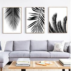 69 ideas palm tree black and white living rooms Palm Tree Print, Palm Trees, Tree Canvas, Canvas Wall Art, Palm Tree Decorations, Black And White Living Room, Bedroom Decor, Wall Decor, Wall Plaques
