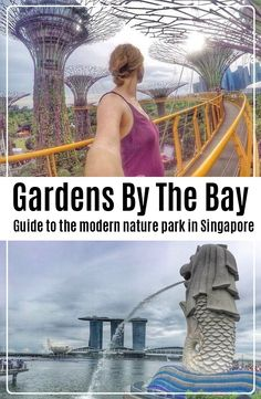 Complete guide to the modern nature park in Singapore Travel And Tourism, Us Travel, Travel Destinations, Travel Plan, Fishing Lures, Fly Fishing, Travel Guides, Travel Tips, Types Of Fish