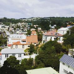Italy? BRASIL? No Wellington.  From the top of Dixon St flats.