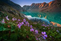 Landscape photographer Albert Dros has returned from a trip to Kyrgyzstan with an incredible set of travel photos that show off the wild, untouched landscape of the Central Asian country. Nature Photography, Travel Photography, Photography Tips, Bon Plan Voyage, Altitude Sickness, Road Trip, National Geographic, Seen, Photo Series